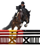 Equestriat, horse jumping Stock Photo