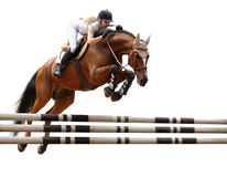 Equestriat, horse jumping. Stylized by oil painting - isolated on white Royalty Free Stock Images