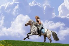 Equestrienne Stock Photography
