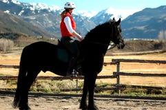 equestrienne friesian zdjęcie royalty free