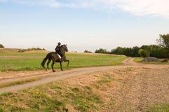 Equestrienne y un caballo. Foto de archivo