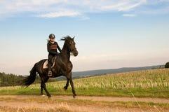 Equestrienne y un caballo. Foto de archivo libre de regalías