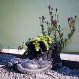 equilibrio degli esseri umani e della natura Fotografia Stock Libera da Diritti