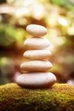 Equilibrio ed armonia in natura Fotografia Stock Libera da Diritti