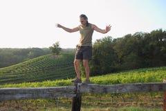 Equilibrist sobre viñedos Imagenes de archivo