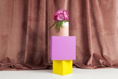 Equilibrium coloured cubes and pink flowers rhododendron. Bicolor vase with pink flowers of rhododendron on colored cubes in equilibrium. Minimal still life stock images