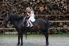 Equine терапия, концепция воссоздания стоковое фото rf
