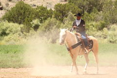 Equine Demonstration Las Golondrinas Summer Fest. Royalty Free Stock Photo