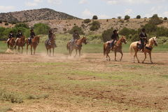 Equine Demonstration Las Golondrinas Summer Fest. Stock Photography