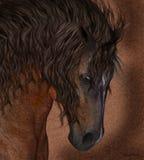 Equine konst för för hästhälsningskort/vägg Royaltyfri Foto