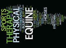 Equine Physical Therapy Text Background  Word Cloud Concept Royalty Free Stock Image
