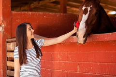 Equine Therapy in a ranch Stock Images