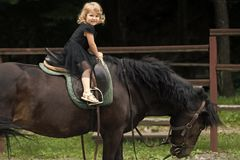 Equine therapy, recreation concept. Child sit in rider saddle on animal back. Girl ride on horse on summer day. Friend, companion, friendship. Sport activity royalty free stock photography