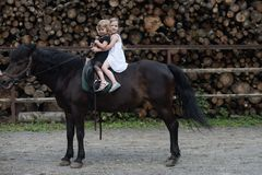 Equine therapy, recreation concept. Children sit in rider saddle on animal back. Sport, activity, entertainment. Friend, companion, friendship. Girls ride on stock images
