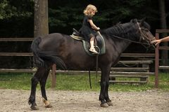 Equine therapy, recreation concept. Girl ride on horse on summer day. Child sit in rider saddle on animal back. Friend, companion, friendship. Equine therapy stock images