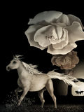Equinox. Surreal digital painting of a white horse running under wilting white roses in a symbolic representation of time Royalty Free Stock Images