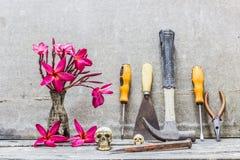 Equipa el florero del cráneo de flores Imagen de archivo