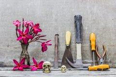 Equipa el florero del cráneo de flores Foto de archivo