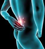 Equipaggi il dolore alla schiena, il dolore, lo scheletro dei raggi x, spina dorsale Fotografie Stock Libere da Diritti