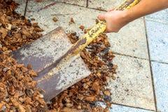 Equipaggi il lavoratore che per mezzo dell'attrezzatura della pala sulla sporcizia dell'argilla del suolo Immagine Stock Libera da Diritti