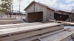 Equipaggi il lavoro ai pacchetti dei bordi imballati del legname immagazzinati nell'iarda della segheria video d archivio