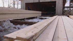 Equipaggi il lavoro alle pile di legname imballato immagazzinato nell'iarda della segheria video d archivio