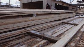 Equipaggi il lavoro alle pile di plance imballate del legname immagazzinate nell'iarda della segheria archivi video