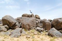 Equipaggi il salto sulle rocce nel deserto #3 Fotografie Stock Libere da Diritti