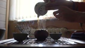 Equipaggi il tè di versamento del puer dalla teiera a Gaiwan a cerimonia di tè del cinese tradizionale Insieme di attrezzatura pe archivi video