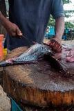 Equipaggi il taglio del tonno fresco con il coltello enorme in Weligama nello Sri Lanka Fotografia Stock Libera da Diritti