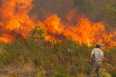 Equipaggi impotente il fuoco enorme delle vigilanze Fotografie Stock Libere da Diritti