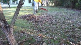 Equipaggi l'iarda del rastrello coperta in foglie asciutte nel giorno freddo di autunno 4K archivi video