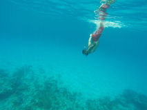 Equipaggi l'immersione subacquea nel mare blu Immagine Stock Libera da Diritti