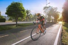 Equipaggi la bicicletta di guida sulla strada piastrellata nel parco Fotografia Stock