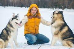 Equipaggi la camminata con l'orario invernale del cane con neve nel Malamute della foresta Immagine Stock