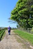 Equipaggi la camminata su un sentiero per pedoni in primavera dopo gli alberi Fotografia Stock