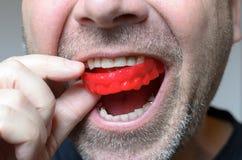 Equipaggi la collocazione del piatto rosso del morso nella sua bocca immagine stock