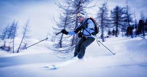 Equipaggi la corsa con gli sci nella neve della polvere in legno nevoso Fotografia Stock Libera da Diritti
