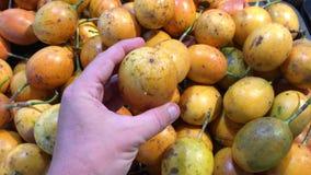 Equipaggi la mano che seleziona il frutto della passione esotico organico fresco nel supermercato Asia Meridionale, Indonesia, Ba video d archivio