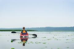 Equipaggi la rematura del kajak fra i fiori del giglio sul lago fotografie stock libere da diritti