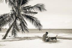 Equipaggi la seduta sulla spiaggia vicino dalla palma Immagine Stock Libera da Diritti