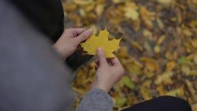 Equipaggi la tenuta della foglia gialla bella in sue mani, pensanti circa oltre, nostalgia stock footage