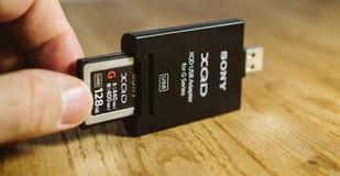 Equipaggi la tenuta della scheda di memoria nuova di XQD dal lettore di schede di Sony Fotografia Stock Libera da Diritti