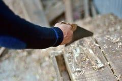 Equipaggi la tenuta della sega & il taglio del legno Fotografia Stock Libera da Diritti