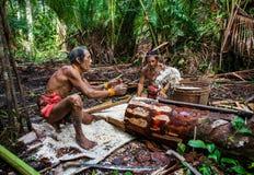 Equipaggi la tribù di Mentawai nella giungla che raccoglie le piante Immagine Stock