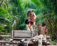 Equipaggi la tribù di Mentawai nella giungla che raccoglie le piante Immagini Stock