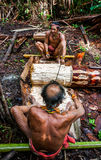Equipaggi la tribù di Mentawai nella giungla che raccoglie le piante Fotografie Stock Libere da Diritti