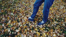 Equipaggi le gambe negli stivali dei jeans che camminano sulle foglie di autunno nel movimento lento del parco archivi video