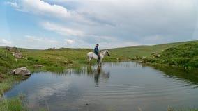 Equipaggi montare un cavallo dentro un piccolo stagno in Savsat, Artvin, Turchia immagini stock