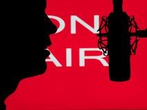 Equipaggi parlare nel microfono Immagine Stock Libera da Diritti
